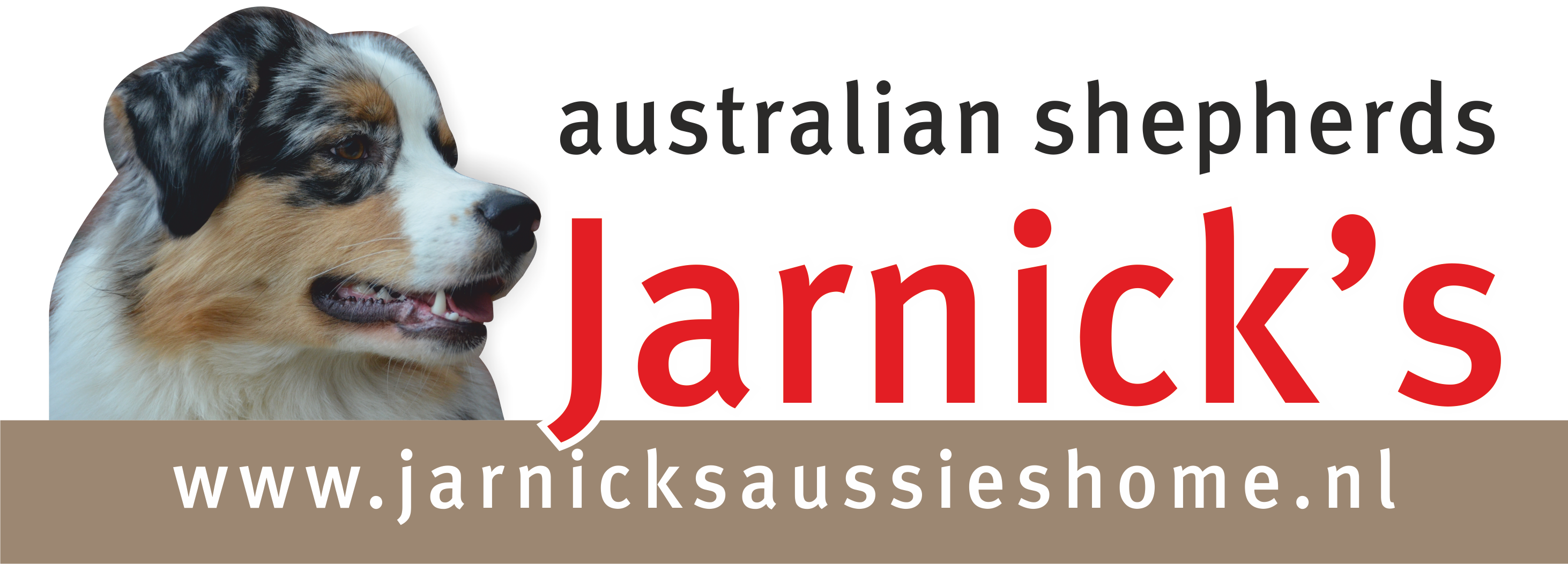 Jarnick's logo website