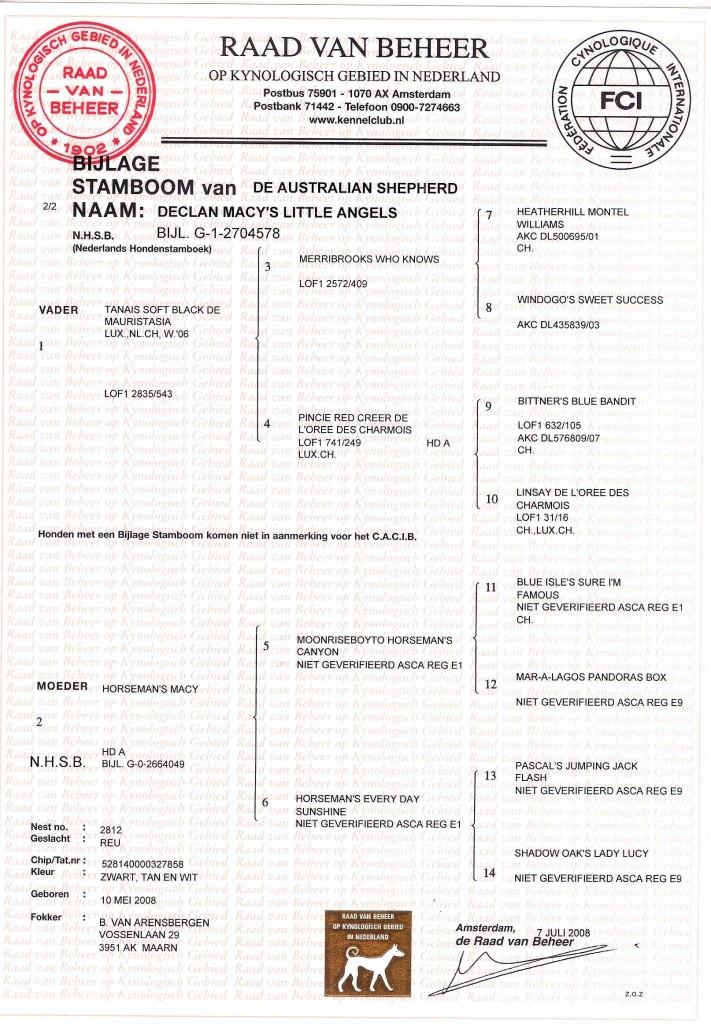 Stamboom Pirlo-1