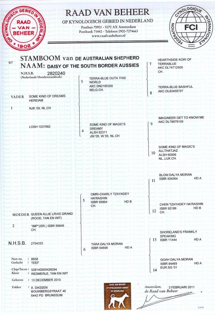 Stamboom gina-1